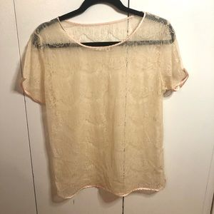 Delicate sheer lace top